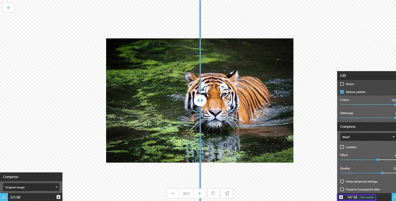 Tipos de archivos de imagen: compresión de imágenes webp