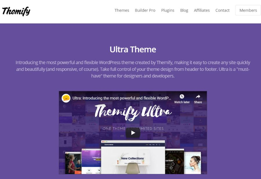 themfy - tema de membresía de WordPress