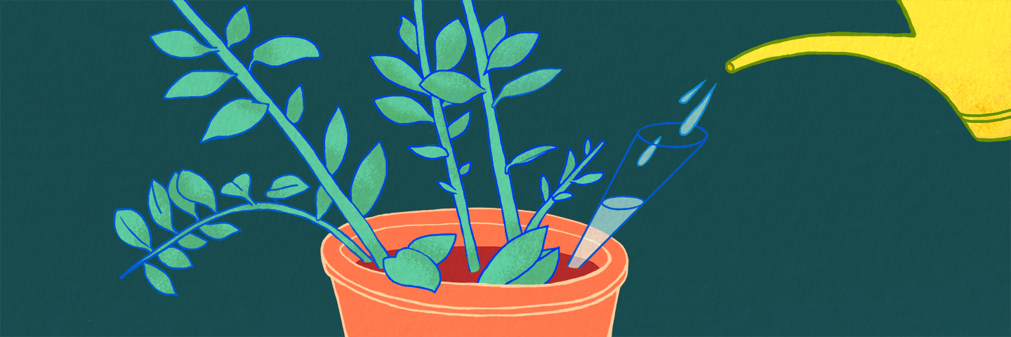 illustration of a plant being watered