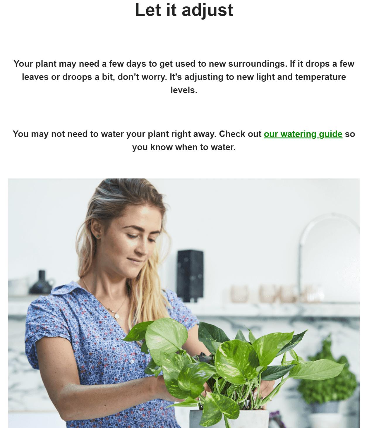 Ejemplo de un curso por correo electrónico de Patch