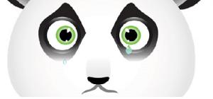 Google Panda: efecto en el SEO local y el mercado empresarial local